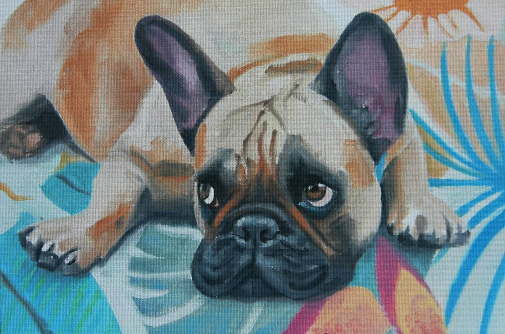 frenchie_on_rug